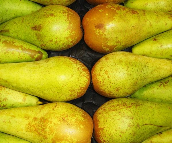 fruit-1b