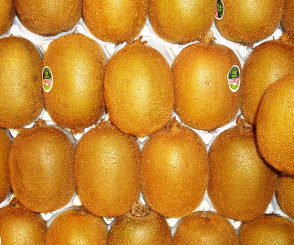 fruit-1d